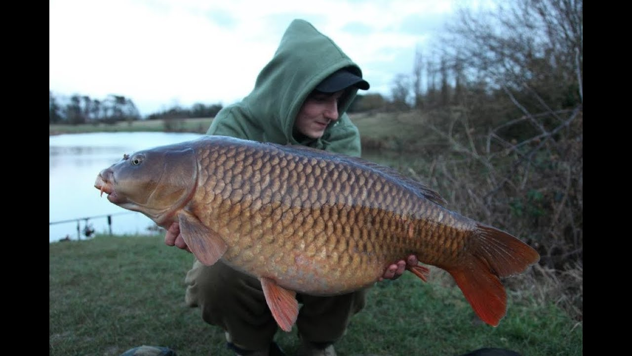 Carp Fishing Videos Tips And Techniques Winter Tactics