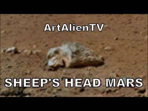 Mars Sheep's Head: Are NASA Blind? Let's Sue Them! Curiosity Animal: MARS ZOO 2014. ArtAlienTV 720p