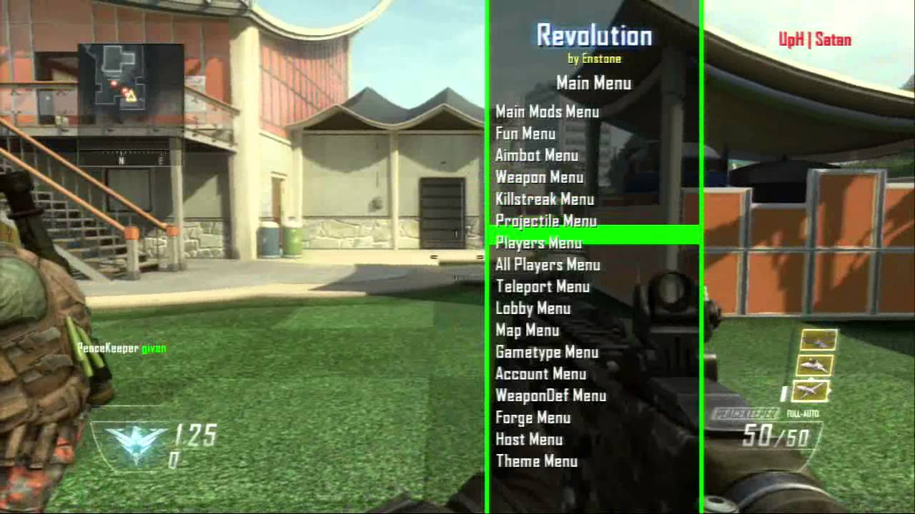 how to turn on aimbot black ops 2