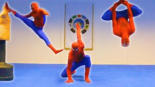 Taekwondo Spiderman: Flips & Kicks