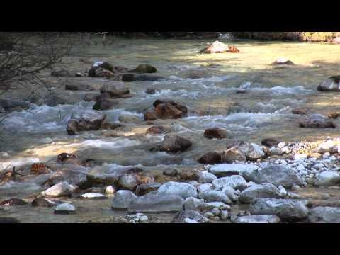 VODA (dokumentarni film)