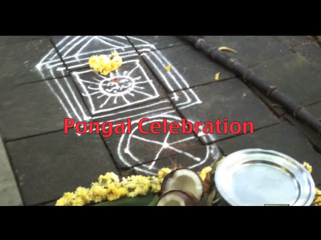Dr. Geeta Vasudevan on What is Pongal