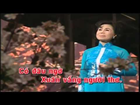 Karaoke Don xuan nay nho xuan xua   Thanh Tuyen