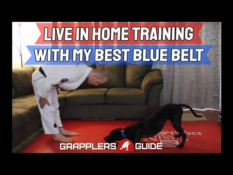 Live In Home Training With My Best BJJ Blue Belt - Jason Scully