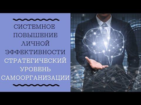 1.1 Стратегический уровень самоорганизации
