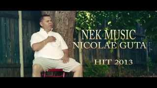 NICOALE GUTA - MA BATE VANTU IN FATA 2013 [OFFICIAL VIDEO HD]