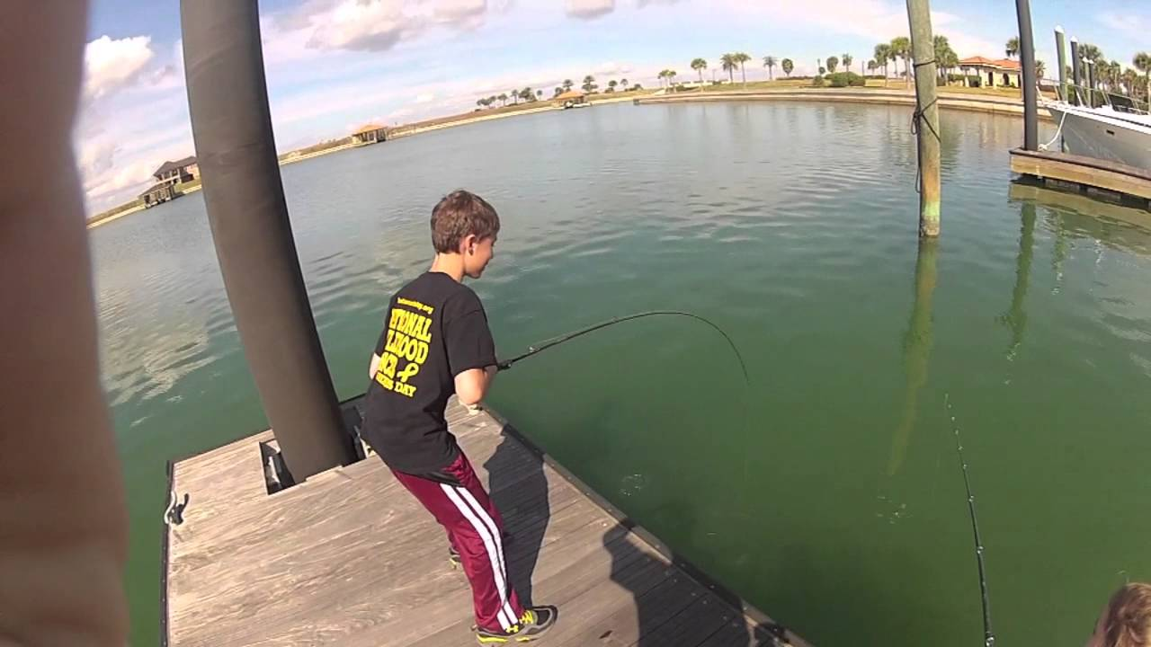 sheepshead fishing youtube