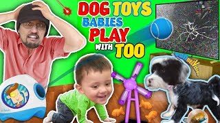 DOG TOYS that Break your TV!  (FUNnel Vision Vlog)