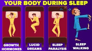 Things That Happen To Your Body While You're Asleep