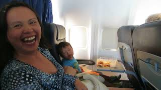Baby Falls Asleep While Eating