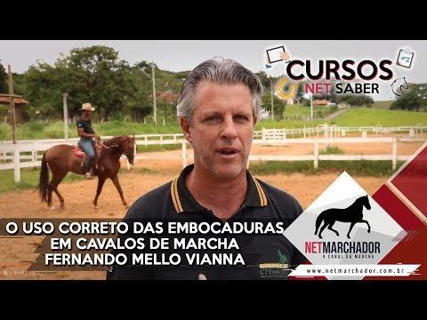 USO CORRETO DE EMBOCADURAS EM CAVALOS DE MARCHA COM FERNANDO MELLO VIANNA