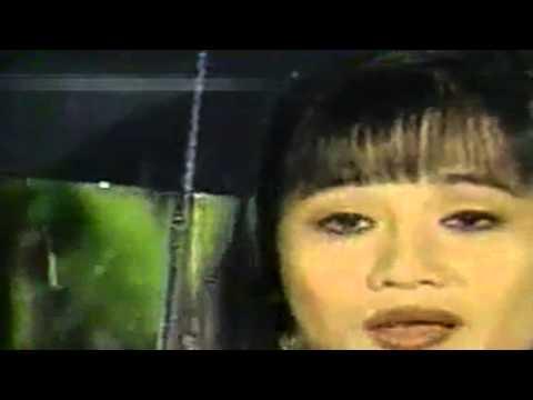 Chuyện Đêm Mưa - Phi Long & Ngọc Hòa