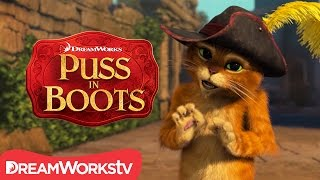 How To Speak Cat NEW PUSS IN BOOTS