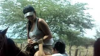 Chica cae de caballo