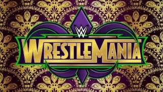 WWE WRESTLEMANIA 34 Match-Card