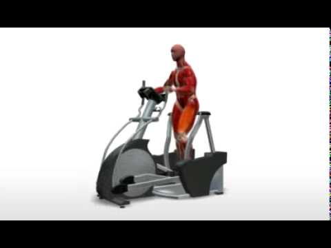 landice elliptical equipment