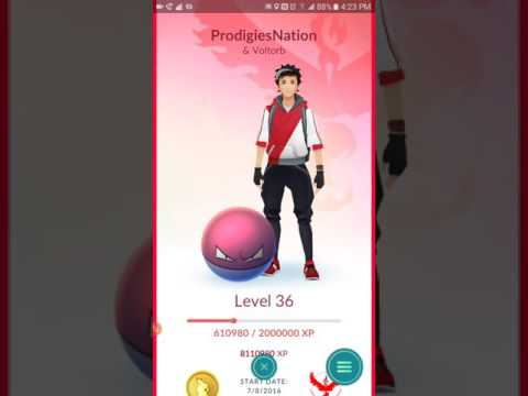 Pokémon Go Level 36 - Nest Update and Buddy System - The Truth