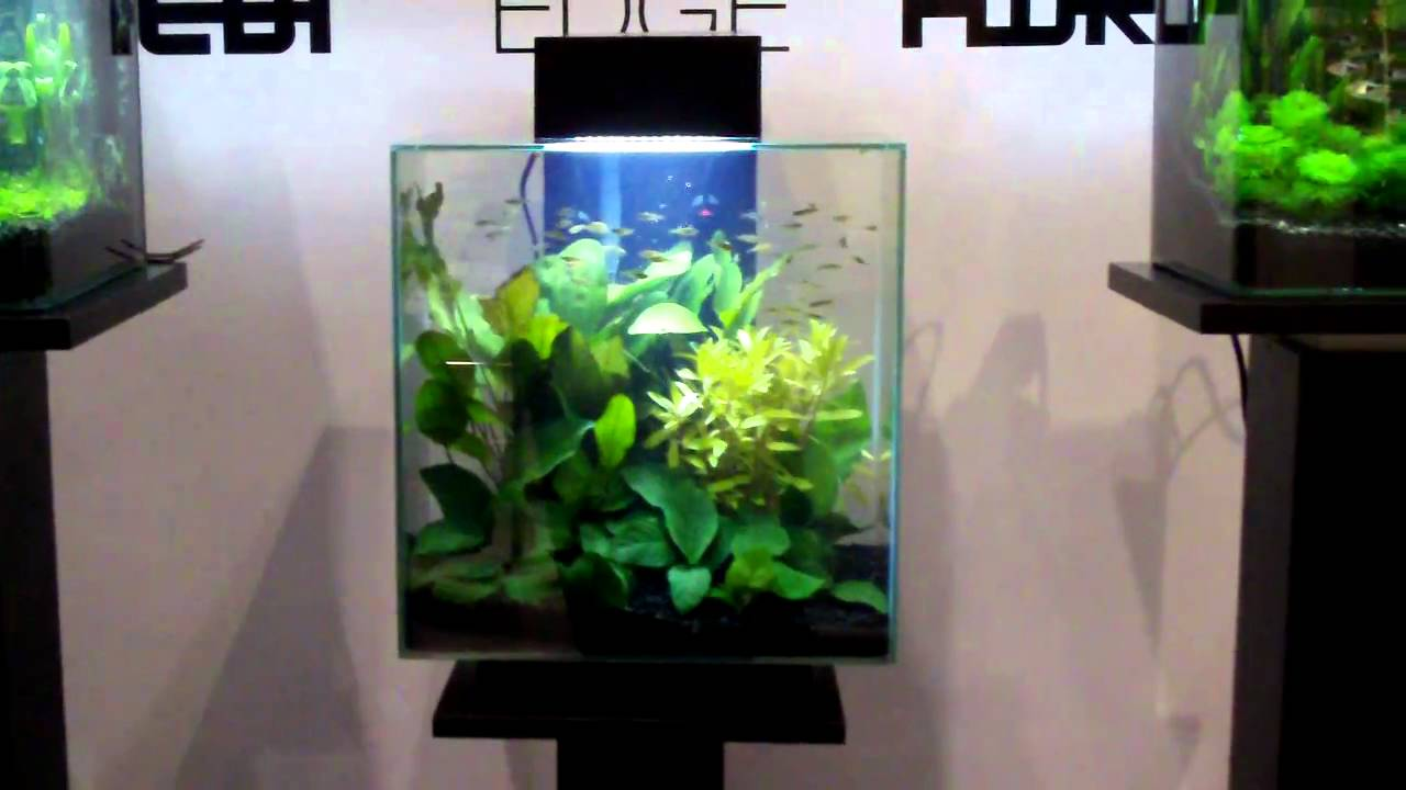 Fluval Edge 2 12 Gallon Size New Led Lights And New