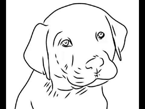 Dog drawing easy cute - photo#16