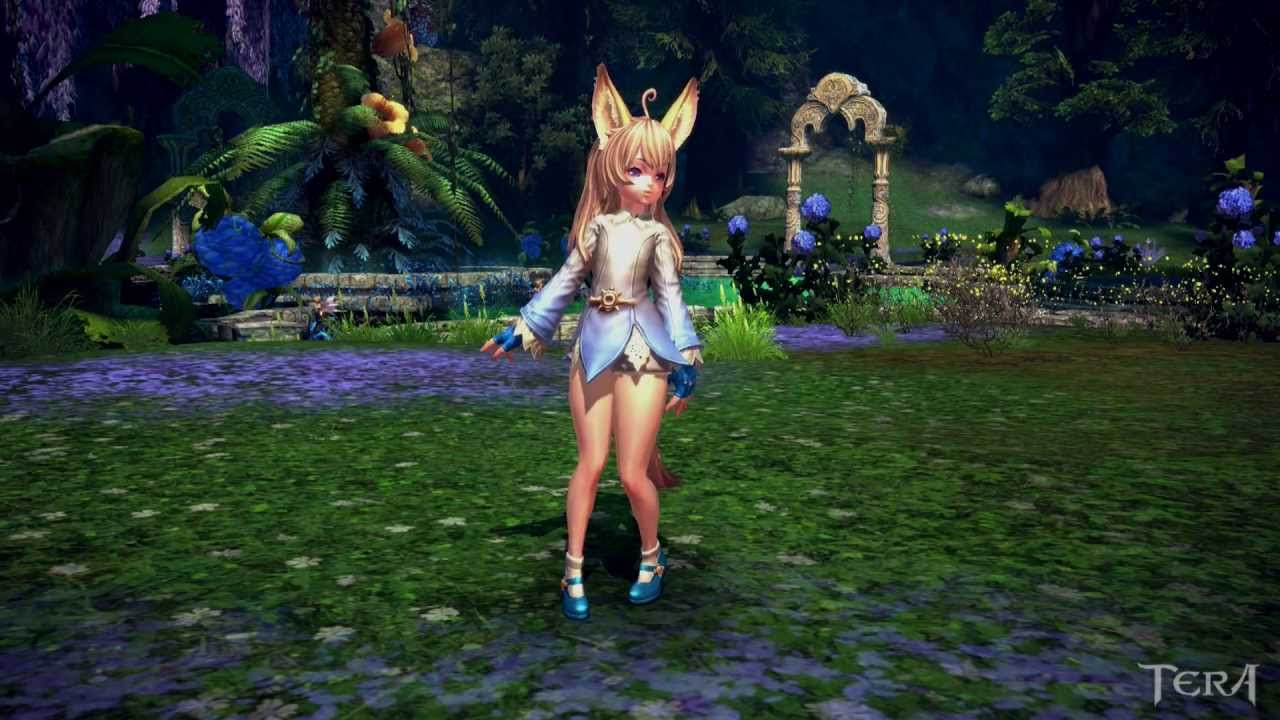 tera how to add emotes to hotbar