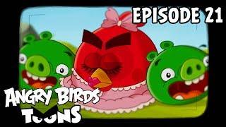 Angry Birds Toons #21 - Hypnotické prase