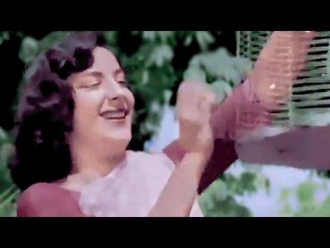 Chori Chori in colour - Panchhi Banoo Udti Phiroon Song, Nargis, Lata Mangeshkar
