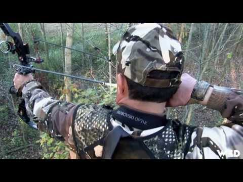 Whitetail Deer Bowhunting