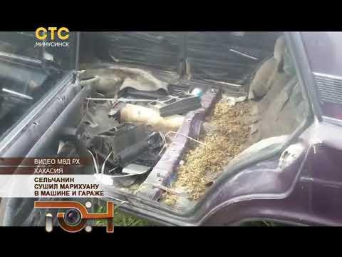 Сельчанин сушил марихуану в машине и гараже