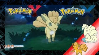 Pokemon X And Y Shiny Vulpix And Evolution