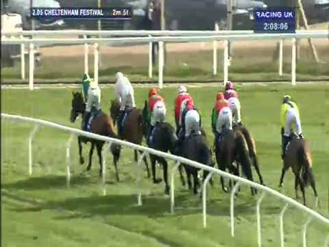 Vidéo de la course PMU THE BARING BINGHAM NOVICES'HURDLE RACE