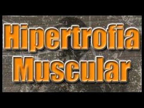 Como Ganhar Massa Muscular - Hipertrofia Muscular