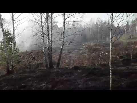 Бердский дачник не справился с огнем
