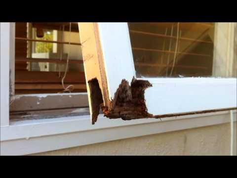 Fix Wood Rot On Window Frame Wmv Youtube
