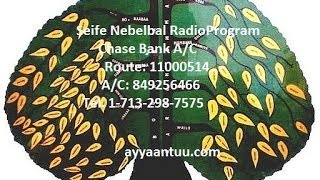 Seife Nebelbal Radio: News and Interview with Ob. Tadios Abdissa