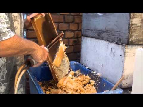 BEEKEEPING: EXTRACTING HONEY BY HAND, 420 Kilos in a day.