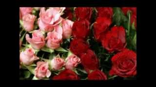 Bollywood Romantic Songs Part 2/2 (Trailer)