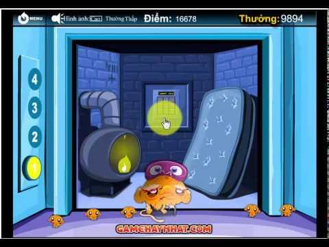 Chú khỉ buồn vui 15 - Game Trí Tuệ - Gamehaynhat.com