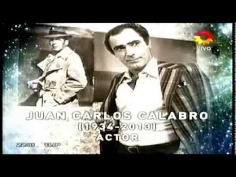 Premios Martín Fierro 2014: El emotivo video en homenaje a los artistas fallecidos
