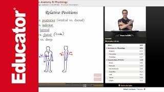 """Introduction to Anatomy & Physiology"" 