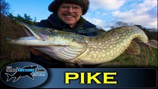 Pike fishing with the New Bitchin' Twitchin' rig - The Totally Awesome Fishing Show