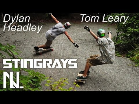 StingRays - Tandem Freeride w/ Dylan Headley and Tom Leary of Nelson Longboards