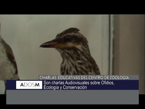 #A2M: charlas sobre animales venenosos y aves de Córdoba