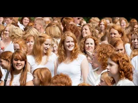 The Truth About Gingers 2014