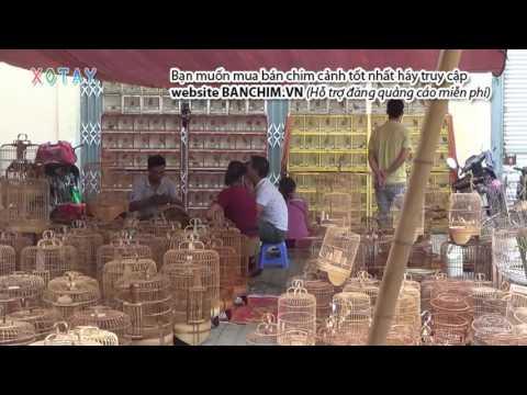 Phiên chợ đầu mối phía nam Hà Nội Web banchim.vn - Chuyên mua bán chim cảnh