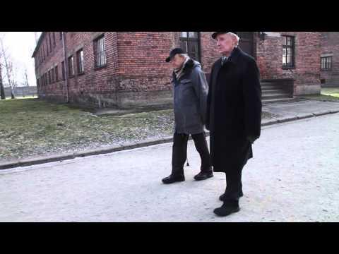 Auschwitz –  Haben Sie sich je gefragt