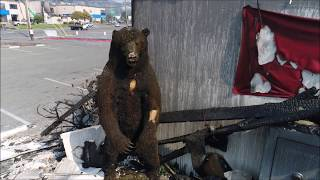 Santa Rosa Fire | Gun Shop and Coddingtown Mobile Estates Fire Damage