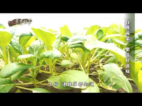 高雄農業故事館-蔬菜(影片長度:19分15秒)