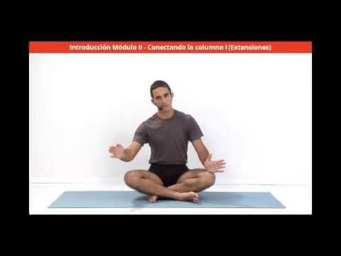 Curso de Yoga Para Principiantes y no Principiantes - Introducción modulo II