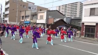 おどるんや~第10回 紀州よさこい祭り~2日目【高松演舞場】和歌山MOVE