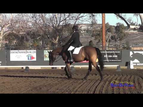 070D Lulu Sieling on Gesundheit Cafu JR Training Rider Dressage Galway Downs Jan 2014